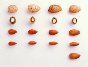 Assorted Almonds
